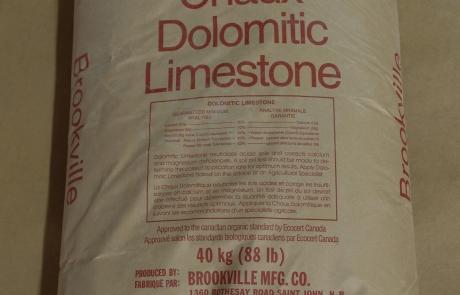 Brookville Dolomitic Limestone